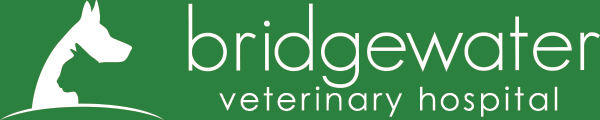 Bridgewater Veterinary Hospital Logo